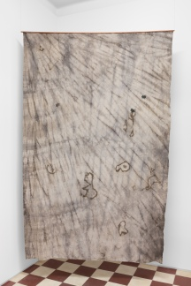 Forest Ghost - Beatles, 2018, UV print and burnt wood on hand dyed fabric, copper, 220 x 144 cm